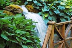 Waterfall In Botanical Garden Stock Photography