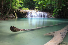 Free Waterfall In Deep Forest Stock Photos - 24720993