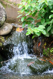 Waterfall In Garden Stock Images