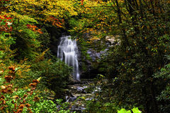 Waterfall In Smoky Mountain National Park In Fall Stock Image