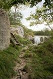 Natural wonder in Istria , Croatia. Waterfall in Istria region , Croatia stock photos