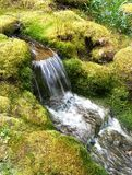 Waterfall in Japanese garden Stock Photo