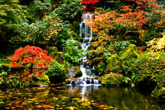 Waterfall, Japanese Garden Royalty Free Stock Photography