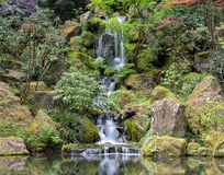 Waterfall at Japanese Garden Stock Images