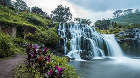 Waterfall in Java Royalty Free Stock Images