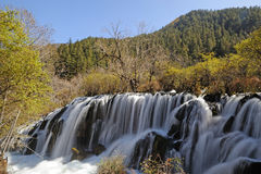 Waterfall  in Jiuzhaigou Royalty Free Stock Image
