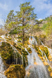 Waterfall in Jiuzhaigou Valley in Sichuan province, China Royalty Free Stock Images