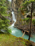 Waterfall in Johnston canyon Stock Photos