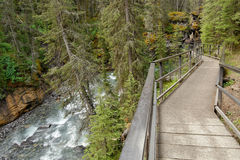 Waterfall in Johnston canyon. Banff National Park, Canada Royalty Free Stock Photography