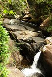 Waterfall in the jungle. Amazing waterfall in the wet green rainforest Stock Photography