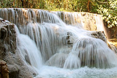 Waterfall in jungle Royalty Free Stock Photo