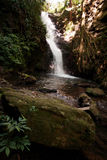 Waterfall in Jungle Stock Photography