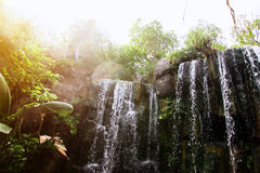 Waterfall in jungle. Stock Photo