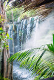 Waterfall in jungle. Royalty Free Stock Images