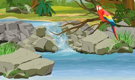 Waterfall in the jungle. Bright macaw parrot on the branches of a tropical tree stock illustration