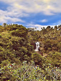 Waterfall in jungle digital illustration. Cloudy sky day in tropical island. Vintage waterfall card stock image