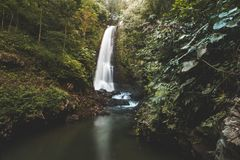 Waterfall in the jungle. Green landscape. Bali. royalty free stock image