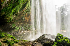 Waterfall in Jungle. Waterfall with green rock behind it Stock Image