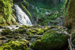 Waterfall in a jungle Stock Photo