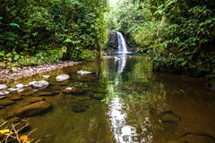 Waterfall in the  jungle. Waterfall in the middle of the Ecuadorian jungle Stock Photo