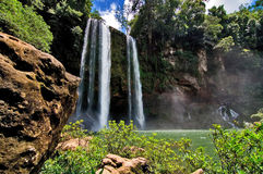 Waterfall in the jungle Stock Photos