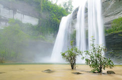 Waterfall in the jungle Royalty Free Stock Images