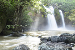 Waterfall in the jungle Stock Image