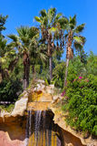 Waterfall in Jungle park at Tenerife Canary Royalty Free Stock Images