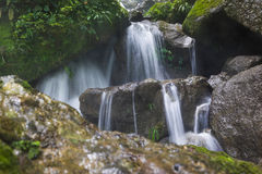 Waterfall in jungle Royalty Free Stock Images