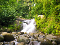 Waterfall in the jungle Royalty Free Stock Photo