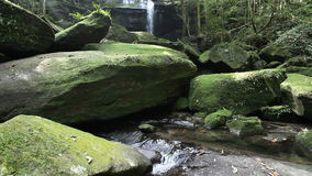 Waterfall in the jungle stock video footage