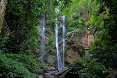 Waterfall in the jungle Stock Images