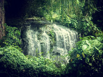 Waterfall in jungles of Seychelles. Mahe island Royalty Free Stock Photography