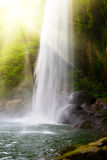 Waterfall in jungles with sun Stock Photography