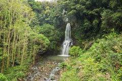 Waterfall in the Kohala area Stock Photography