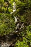 Waterfall at lake del Desierto Stock Image
