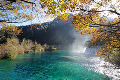 Waterfall  and lake in Jiuzhaigou Stock Images