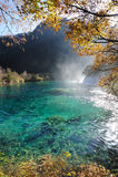 Waterfall  and lake in Jiuzhaigou Royalty Free Stock Photography