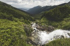 Alpine stream. Waterfall on Lala stream and a view towards Bucovina Stock Photography