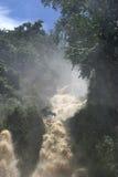 Waterfall in Laos. Wild waterfall in Laos royalty free stock image