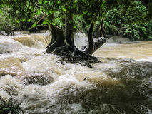 Waterfall of Laos Stock Images