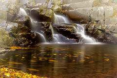 Waterfall and leaves Royalty Free Stock Images