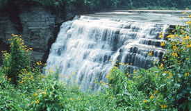 Waterfall, Letchworth Park, NY Stock Image