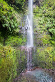 Waterfall in the Levada of Caldeirao Verde, Madeira, Portugal Stock Image