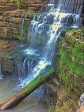Waterfall and log Royalty Free Stock Image