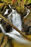 Waterfall and log Stock Photography