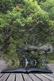 Waterfall long exposure landscape image in Summer in forest sett Stock Images