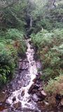 Waterfall. A lovely little waterfall in Colmany, Ireland Royalty Free Stock Photography