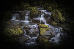 Waterfall in the Lumsdale Valley, Matlock, Derbyshire, Peak Dist Royalty Free Stock Photo