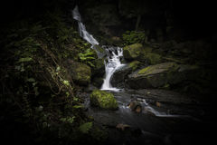 Waterfall in the Lumsdale Valley, Matlock, Derbyshire, Peak Dist Royalty Free Stock Photos